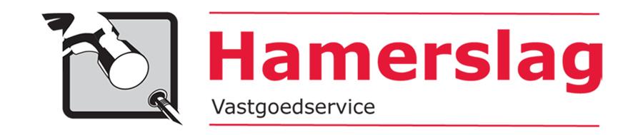 hamerslag-vgs.nl